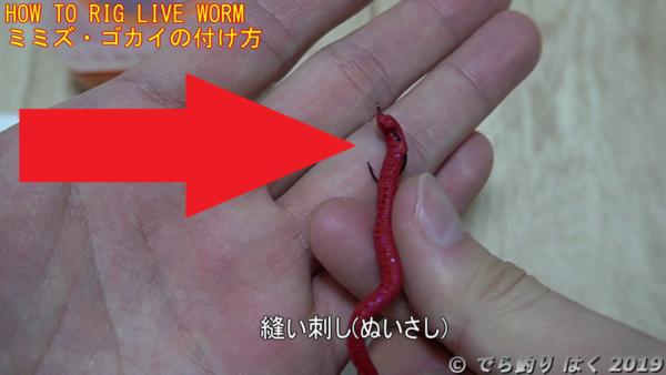 ミミズゴカイの付け方縫い刺し