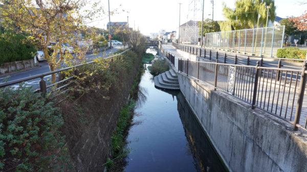 荒子川の遊歩道