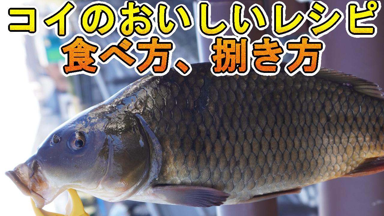 鯉料理のレシピ