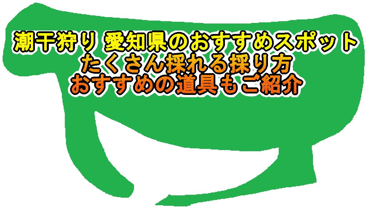 潮干狩りで愛知県でおすすめの場所