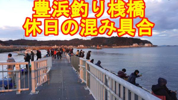 豊浜釣り桟橋の混雑