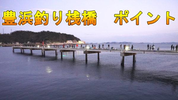 豊浜釣り桟橋のポイント