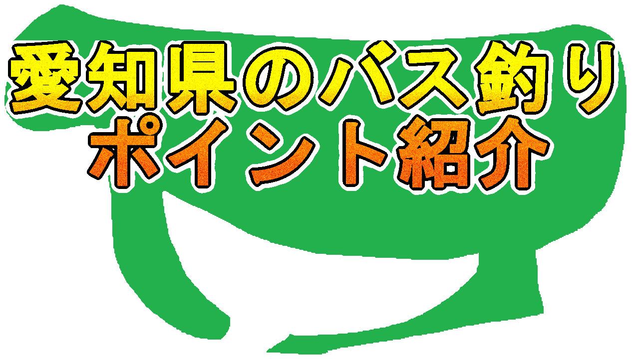 愛知県のバス釣りのポイント