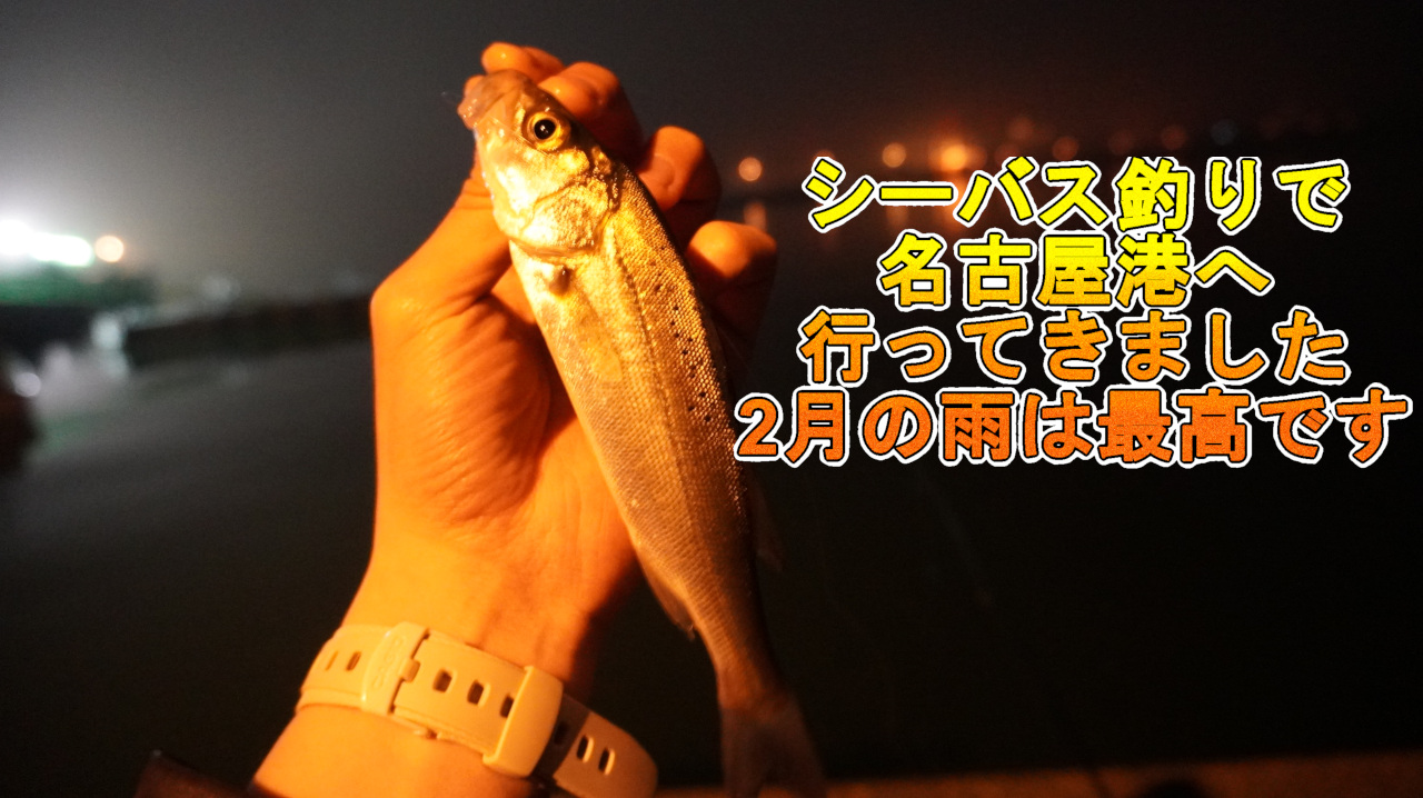 シーバス釣りで名古屋港
