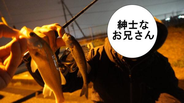 シーバス釣りの釣り人と一緒