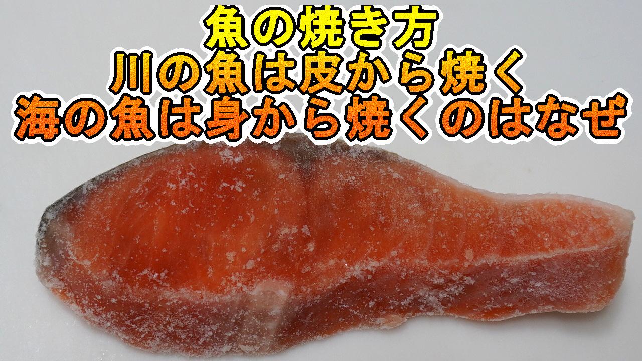焼き魚で川は皮から海は身から