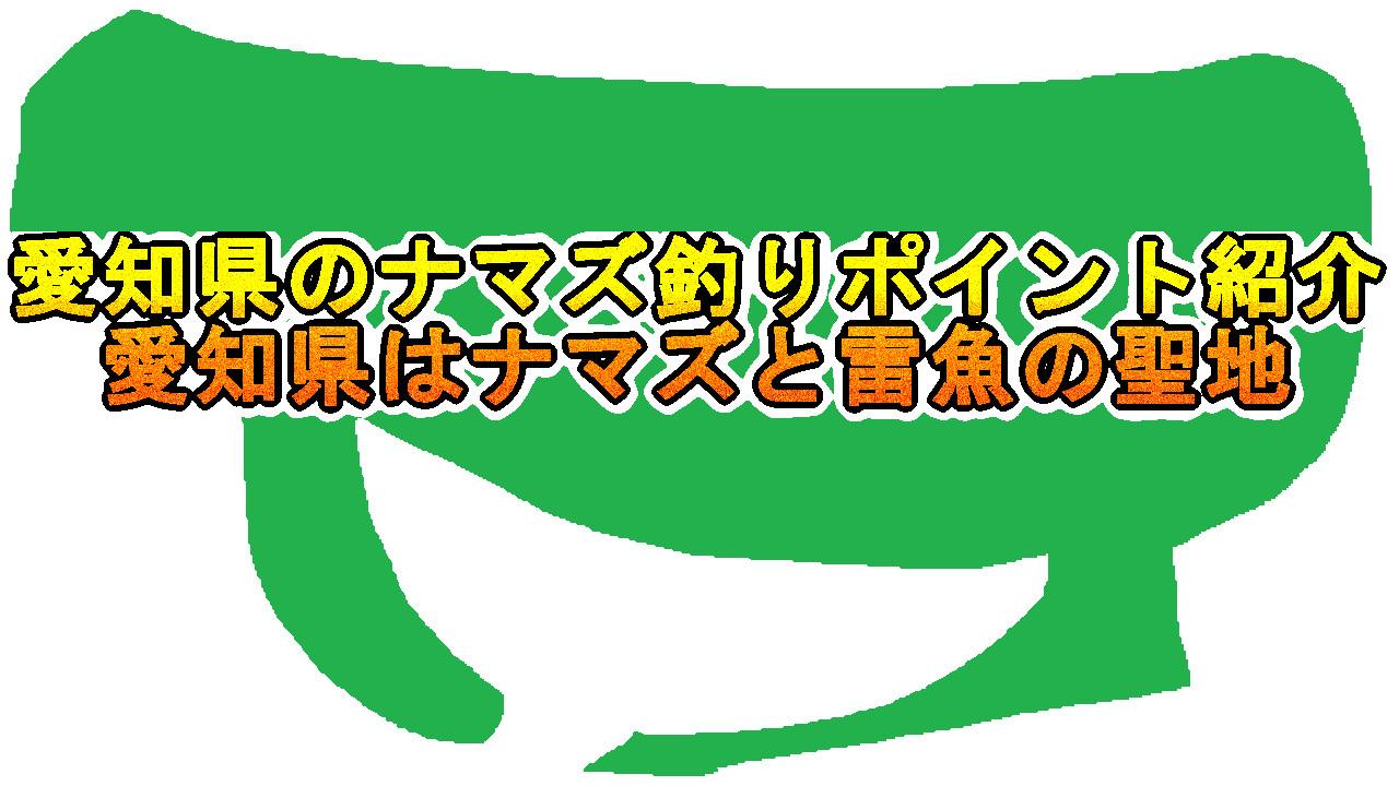 愛知県のナマズ釣りのポイント