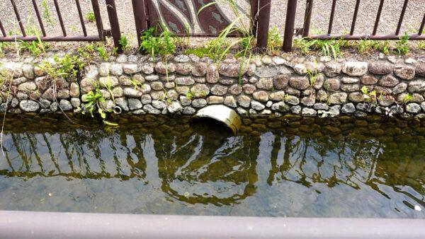 荒子川の水位